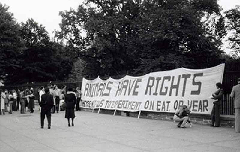 1980 – PETA is Formed