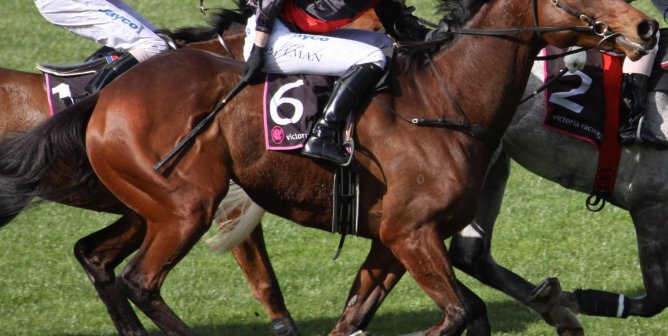Death at the Racetrack: It's a Safe Bet