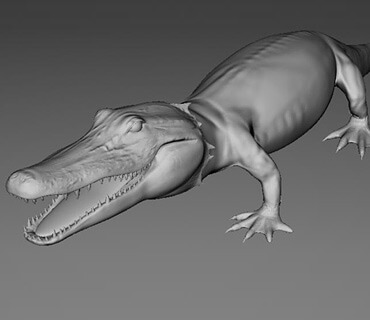 Stolen For Fashion CGI Alligator