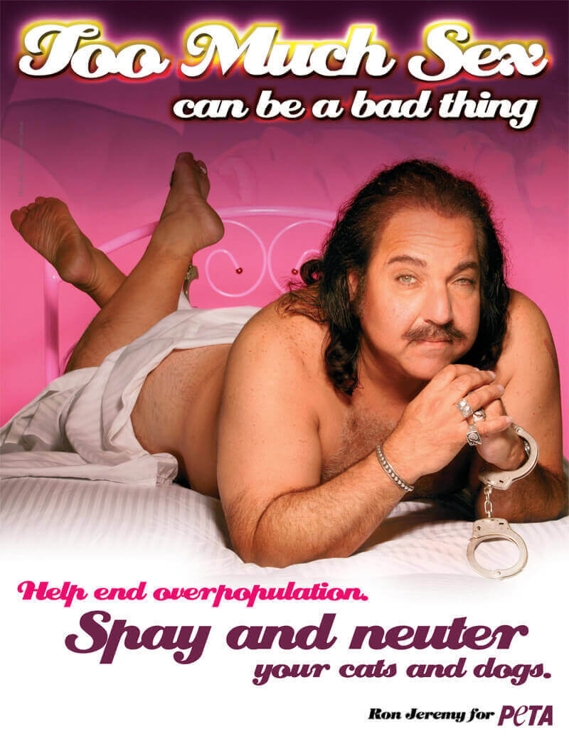 ron jeremy movies