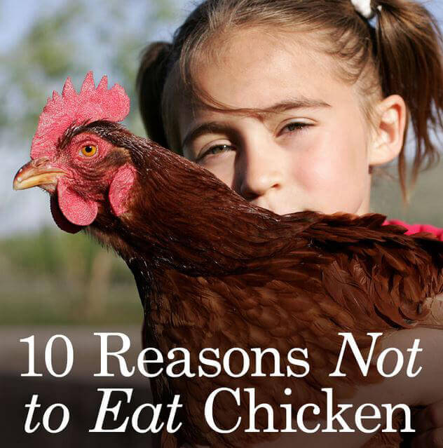 10 Reasons Chicken Shareable