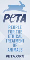 120x240-peta-logo-banner