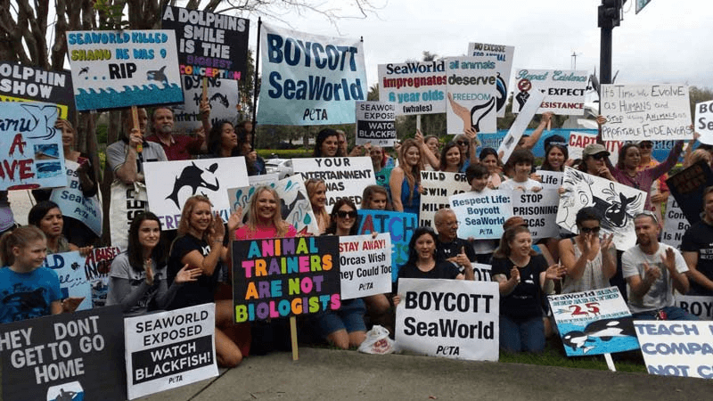 SeaWorld Orlando Demo