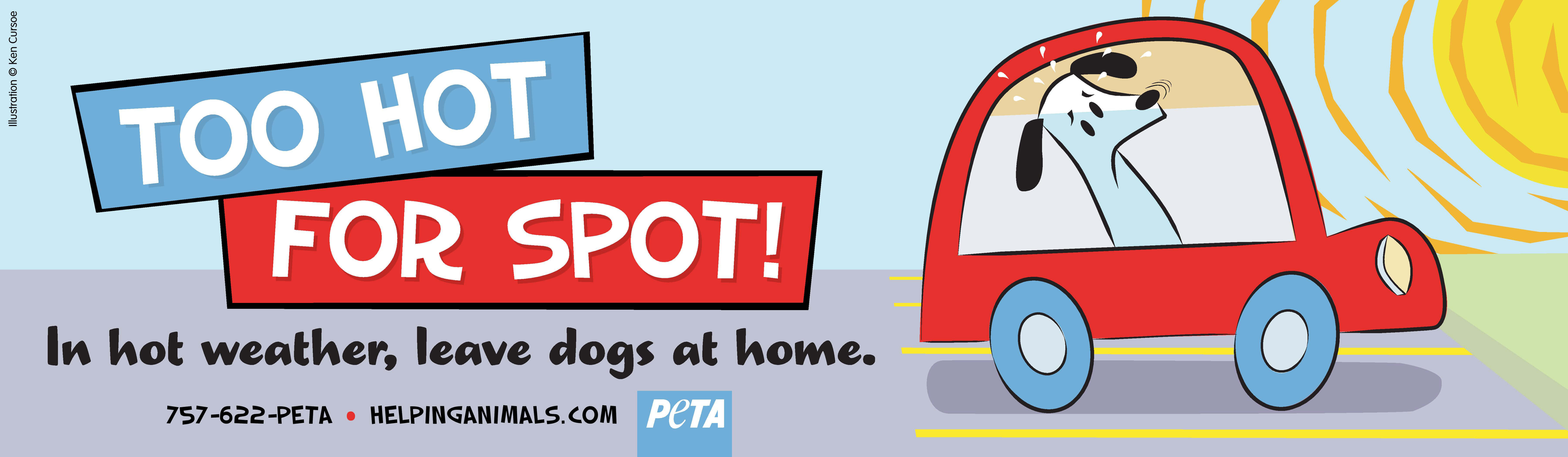 Too Hot for Spot: Save a Dog Now!