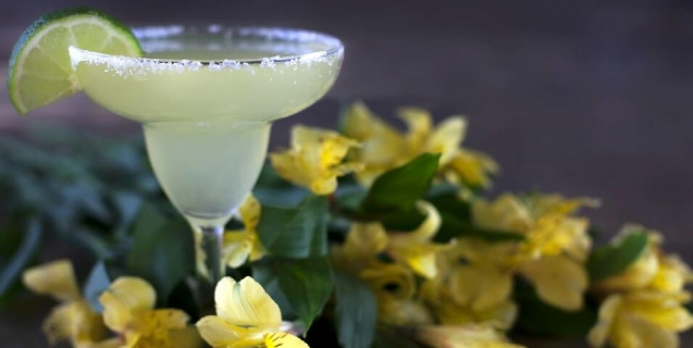 Margarita drink cocktail