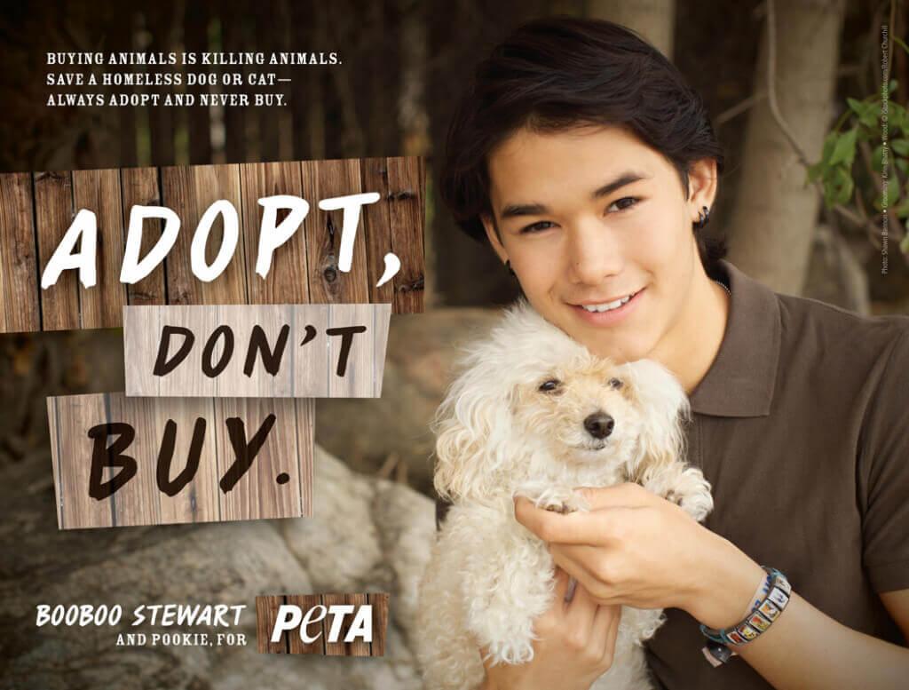 BOOBOO STEWART: ADOPT, DON'T BUY (1) PSA PETA
