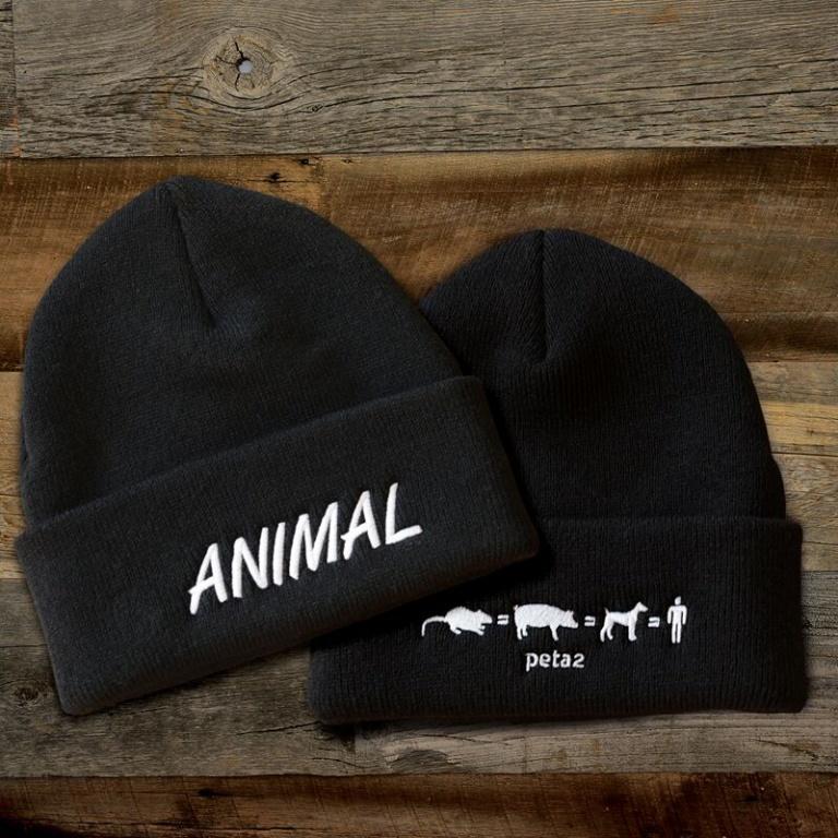 animal beanie peta catalog