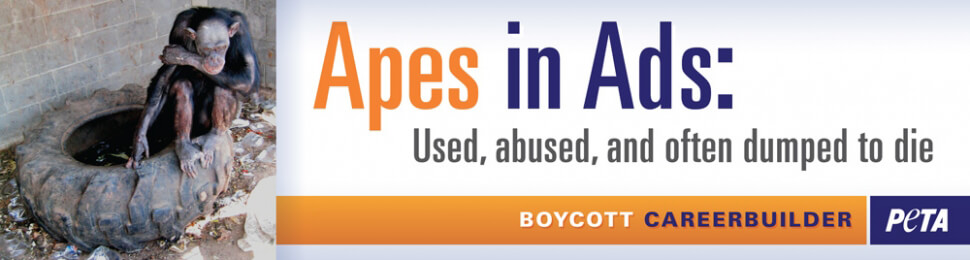 Apes in Ads: Used, Abused, and Often Dumped to Die