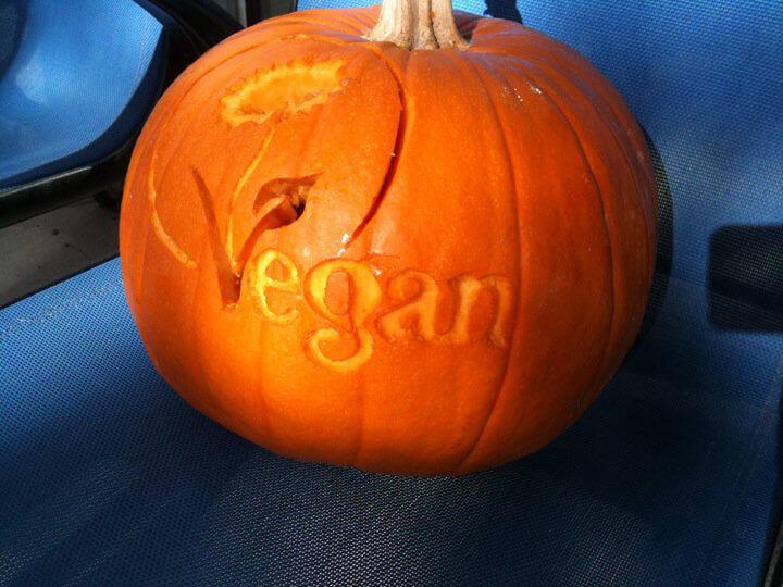 Vegan Logo Pumpkin Optimized