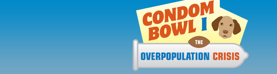 The Condom Bowl