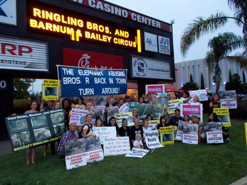 Ringling Bros. Protest