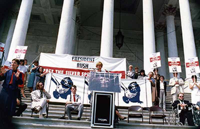 1991 – Silver Spring Monkeys Case Heard by the Supreme Court