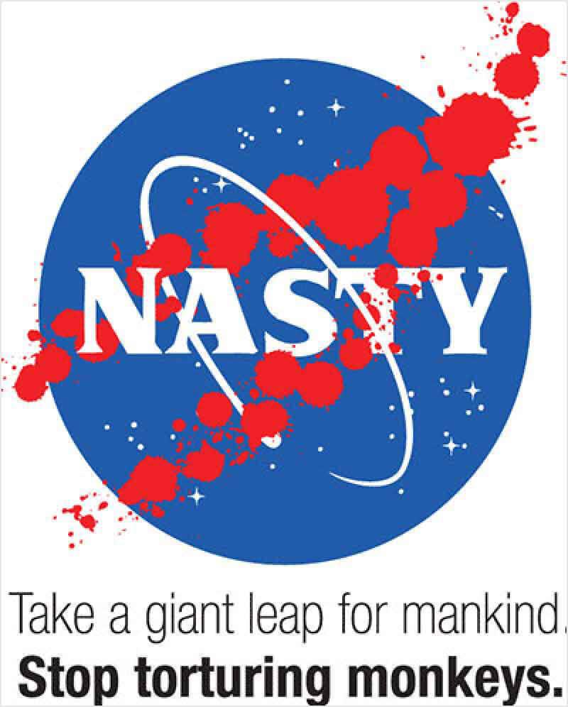 2010 – NASA Monkeys