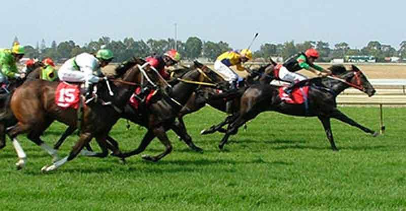 2012 – Horse-Racing