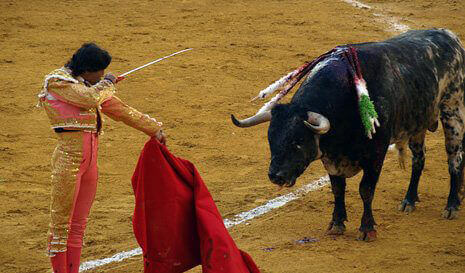 0027.Bullfight_5F00_Curelty_5F00_465.jpg
