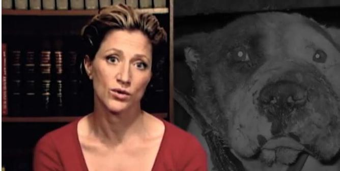 Edie Falco: Violence Toward Animals