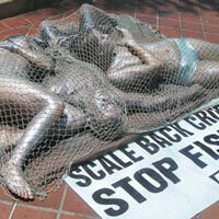 Animal Rights Uncompromised: PETA's Tactics