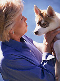 Ensuring the Safety of Your Animal Companion's Food