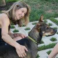 Dogs in Need Hijack Author's Work
