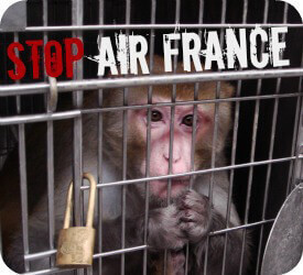 Stop Air France