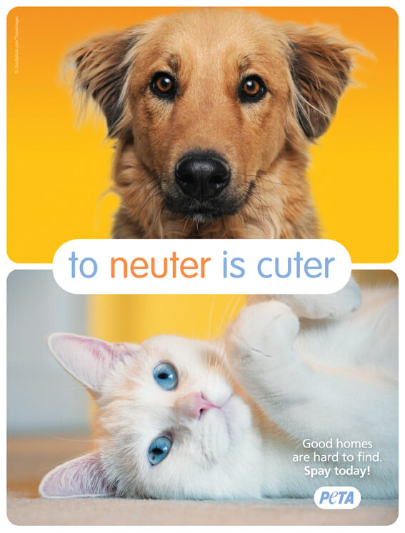 Should PETA Neuter You? | PETA