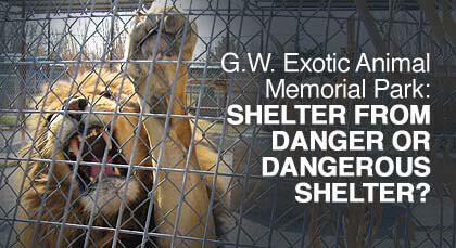 G.W. Exotic Animal Memorial Park