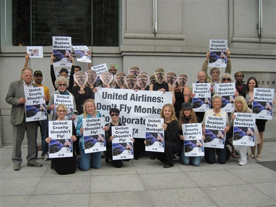 Victory united airlines stops all shipments of primates - China eastern airlines vietnam office ...