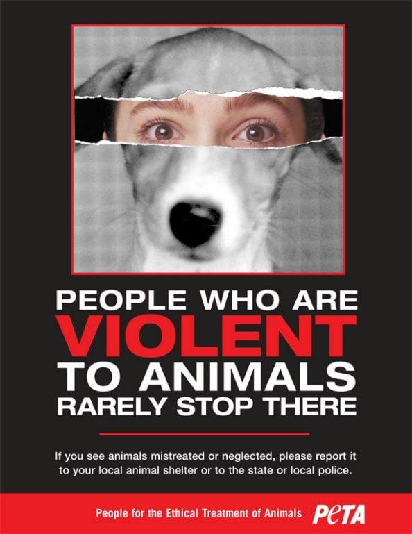 safe animal porn