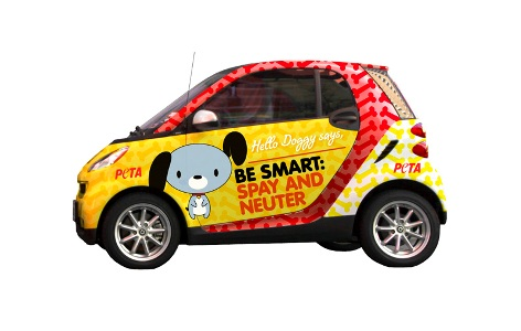 Peta Has Asked Smart Usa To Offer Our Hello Doggy Wrap Alongside Its Own Kitty That Way Caring Fortwo Owners Can Help Save Lives By Driving