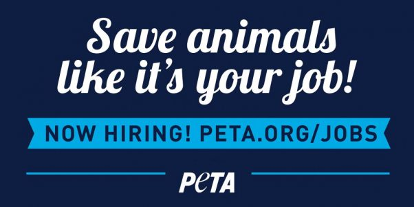 Save Animals Like It's Your Job