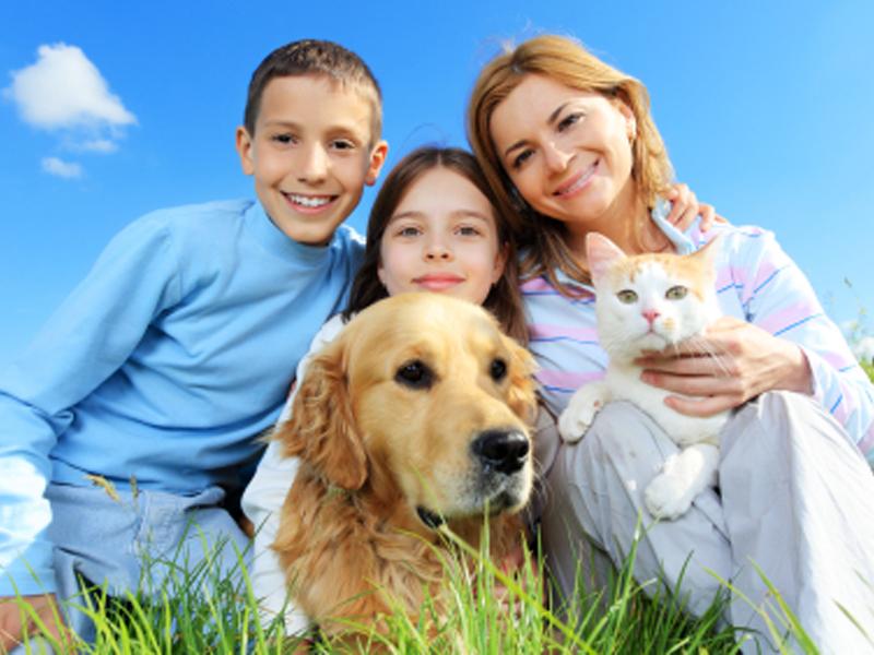 Pledge to End Animal Homelessness