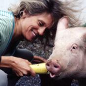 Kathy Stevens of Catskill Animal Sanctuary