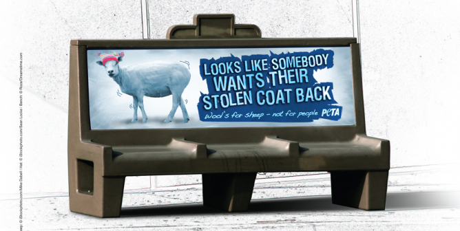 Looks Like Somebody Wants Their Stolen Coat Back (Bench)
