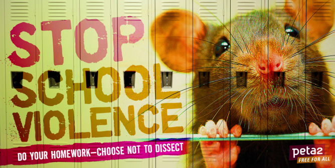Stop School Violence: Choose Not to Dissect