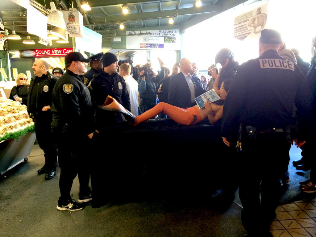 Activist Mermaid Carried out by Cops