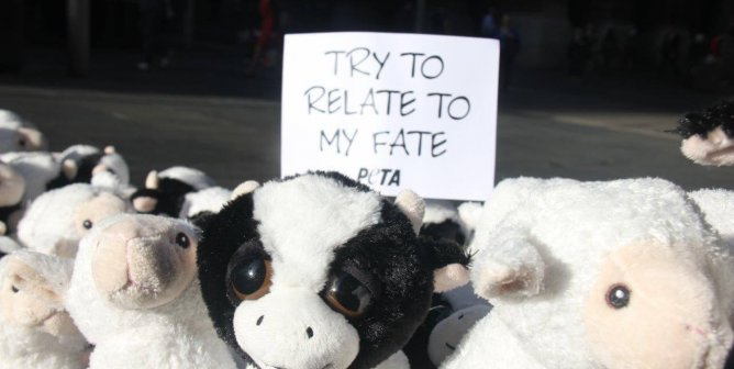 Photos of the Day: Cutest, Saddest Protest Ever