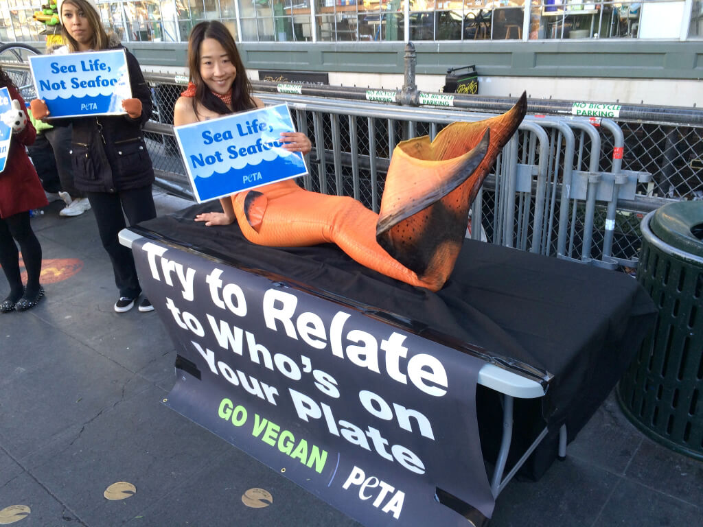 Mermaid Activist in Seattle