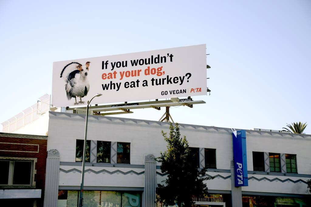 Thankgsiving Turkey Dog Billboard Closer