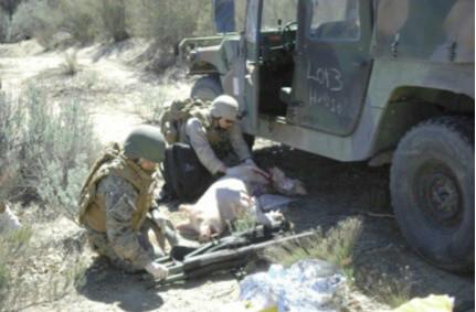 A Veteran Reveals the Military's Most Shocking Secret Yet | PETA