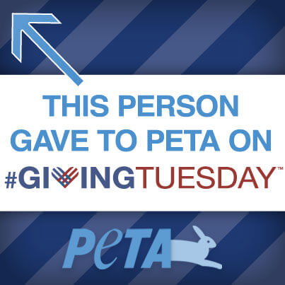 Giving_Tuesday_IMAGE