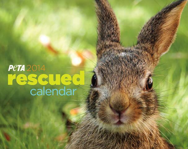 PETA Rescue Calendar