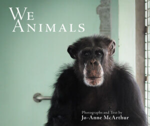 We Animals Book Cover