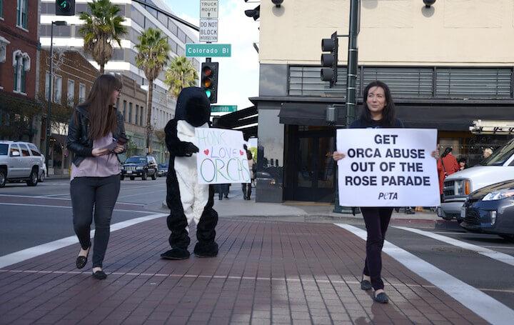 SeaWorld Float Protest in Pasadena