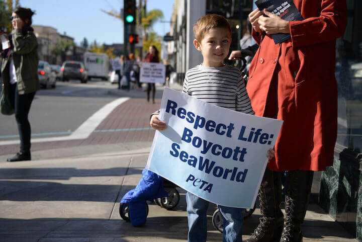 Young Boy Protests SeaWorld Float