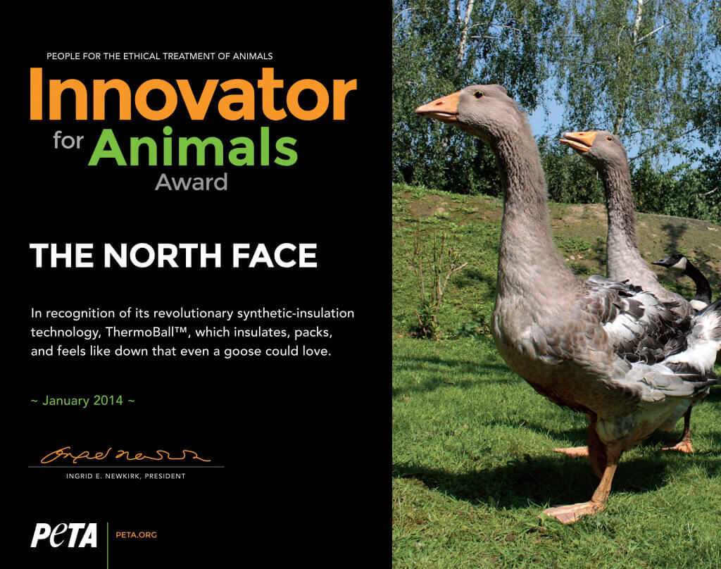 innovator award_north face_FIN300