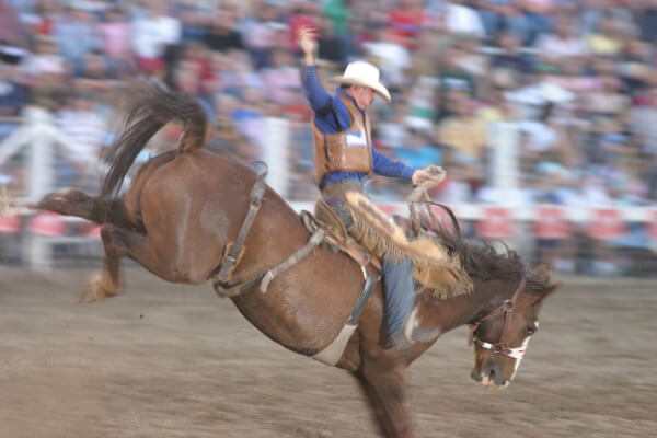 Rodeosmaller(SXC)
