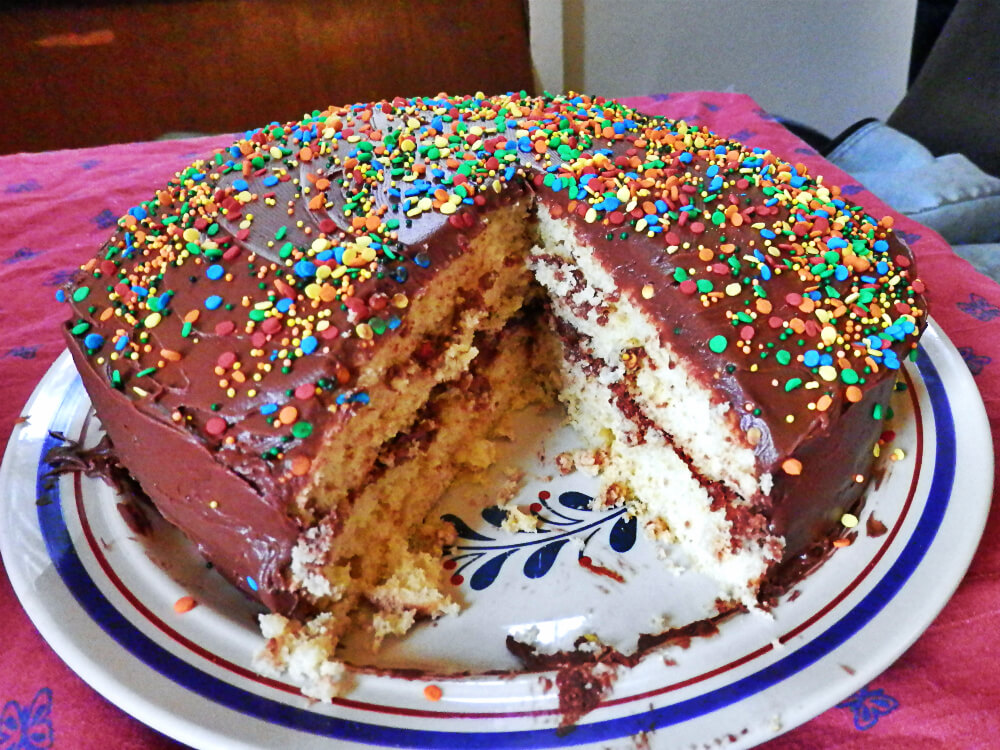 Yellow Cake with Chocolate Icing