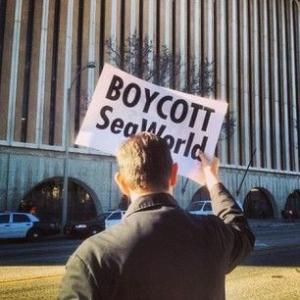 Boycott Seaworld Pasadena