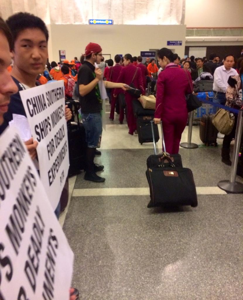 China Southern Protest at LAX (3)