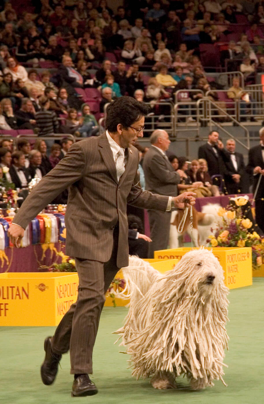 Westminster Dog Show Home Page
